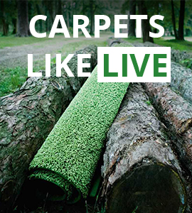 Carpets like live