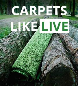 Carpets like live